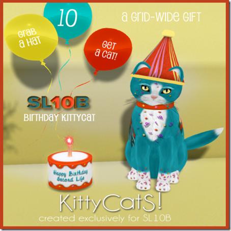 kittycats-sl10b-cat