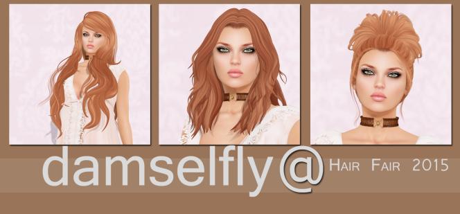 Damselfly at Hair Fair2015